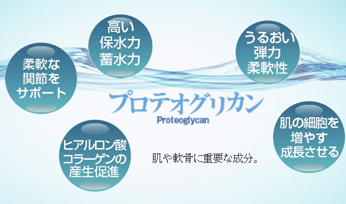 効果 プロテオグリカン